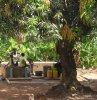 Foto vom Album: Brunnen in Ghana