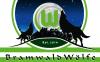Vorschau:BramwaldWölfe