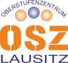 Vorschaubild der Meldung: Beruflicher Aufstieg durch Qualifizierung zum Staatlich geprüften Techniker am Oberstufenzentrum Lausitz