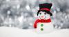 """Vorschaubild der Meldung: Gewerbetreibende für den """"Biederitzer Weihnachtsmarkt"""" gesucht"""