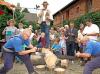 """Vorschaubild der Meldung: MAZ: """"Dorfwettbewerb: Dippmannsdorf und Rädigke holen sich den Sieg"""""""
