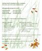 Vorschaubild der Meldung: Änderung der Öffnungszeiten des Grünschnittsammelplatzes