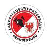 """Vorschaubild der Meldung: Arbeitsergebnisse der AG """"Feuerwehrbekleidung und Dienstgradabzeichen"""""""