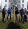 Vorschaubild der Meldung: Baumpflanzaktion TuS Lemförde