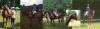 Vorschaubild der Meldung: erfolgreiches Turnierwochenende in Lieberose und Brieselang