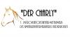 """Vorschaubild der Meldung: """"Der Charly"""" - 1. Improvisationstheater-Wettbewerb des Amateurtheaterverbandes Niedersachsen"""