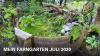 Vorschaubild der Meldung: Hotzenwald Naturgarten: Mein Farngarten Juli 2020