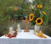 22. Anhaltischer Obst- und Umwelttag am 19.9.2021