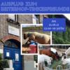 Foto zur Veranstaltung Ferienprogramm - Sommer 2021 / Ausflug mit dem JUZ  zum Reiterhof Tinkerfreunde