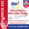 Foto zur Veranstaltung Volleyball-Mix Training
