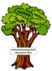 Mein Baum für Holzwickede