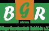 Foto zur Veranstaltung BGR Fasching 2022