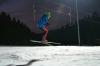 Vorschaubild der Meldung: Erfolgreicher Skicross