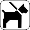 Vorschaubild der Meldung: Anleinpflicht für Hunde