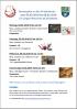 Vorschaubild der Meldung: Winterferienprogramm