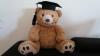 Vorschaubild der Meldung: Erfolgreicher Abschluss für einen unserer Studis