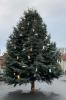 Vorschaubild der Meldung: Der Ebelebener Weihnachtsbaum wurde augestellt