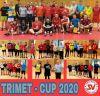 Vorschaubild der Meldung: Trimet Cup 2020