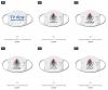 Vorschaubild der Meldung: TVBE Gesichtsmasken ab sofort im Online-Shop verfügbar