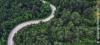 Vorschaubild der Meldung: Bericht zur Lage der Natur:  Gemischtes Bild vom Zustand von Arten und Lebensräumen in Deutschland