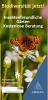 Vorschaubild der Meldung: Kostenlose Beratung für insektenfreundliche Gärten