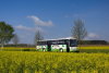"""Vorschaubild der Meldung: Aktuelle Fahrpläne der """"regiobus Potsdam Mittelmark"""" und der Burgenlinie"""