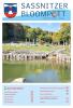 Vorschaubild der Meldung: Sassnitzer Bloompott - Ausgabe 7 ist da