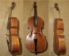 Vorschaubild der Meldung: PS-Lotterie lässt Cello wieder klingen