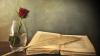 Vorschaubild der Meldung: Gemeindebücherei bleibt geschlossen