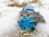 Vorschaubild der Meldung: Virtuell über Frostwiesen