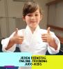 SC Hemmingen - Jeden Dienstag Online-Training Judo-Kids