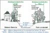 Vorschaubild der Meldung: Mitteilung an die Anlieger von Fließgewässern