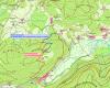 Holzerntemaßnahmen im Helmleswald auf der Gemarkung Hinterzarten vom 20.9. - 1.10.21