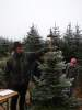 Foto zur Veranstaltung Weihnachtsbaumverkauf