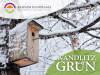 Foto zur Veranstaltung Wandlitz Grün: Nistkastenbau: Ein Platz für Vögel im eigenen Garten