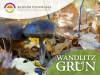 Foto zur Veranstaltung Wandlitz Grün: Das Wichtigste über Pilze in 40 Minuten