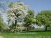 Foto zur Veranstaltung Frühlingswanderung