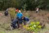 Das Bild zeigt Personen bei der Baumpflanzung.