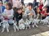 Foto zur Veranstaltung Künstler-Workshop für Kinder